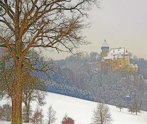 Burg Clam_1