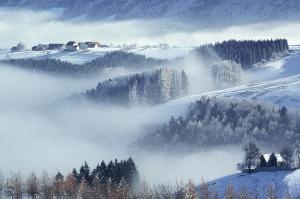 Höfe über dem Nebel