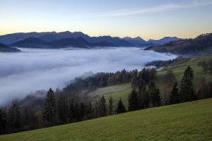 Nebel am Glasenberg