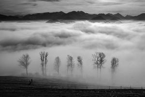Nebelwanderer5008