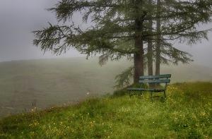 Nebelstimmung_1