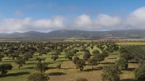 Extremadura Spanien_2