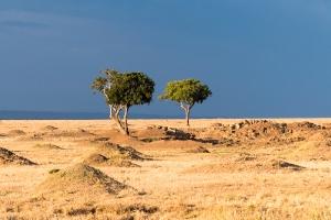 Afrika_3